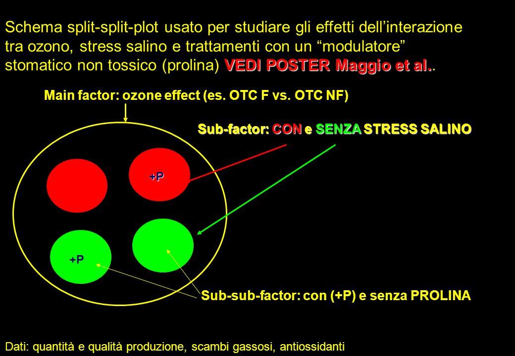 VEDI POSTER Maggio et al. Schema split-split-plot usato per studiare gli effetti dellinterazione tra ozono, stress salino e trattamenti con un modulat