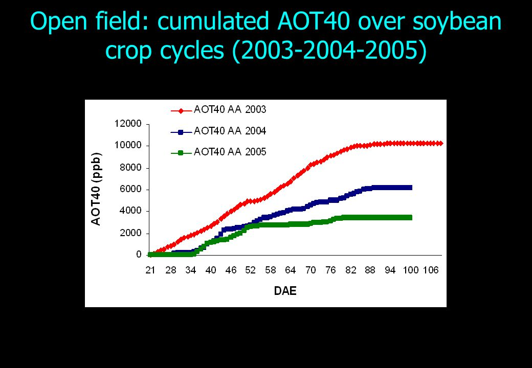 Open field: cumulated AOT40 over soybean crop cycles (2003-2004-2005)