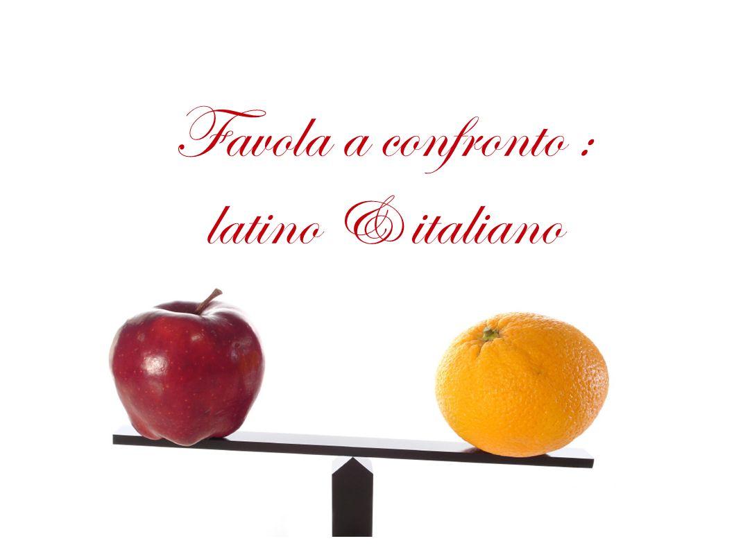 Favola a confronto Latino & italiano :