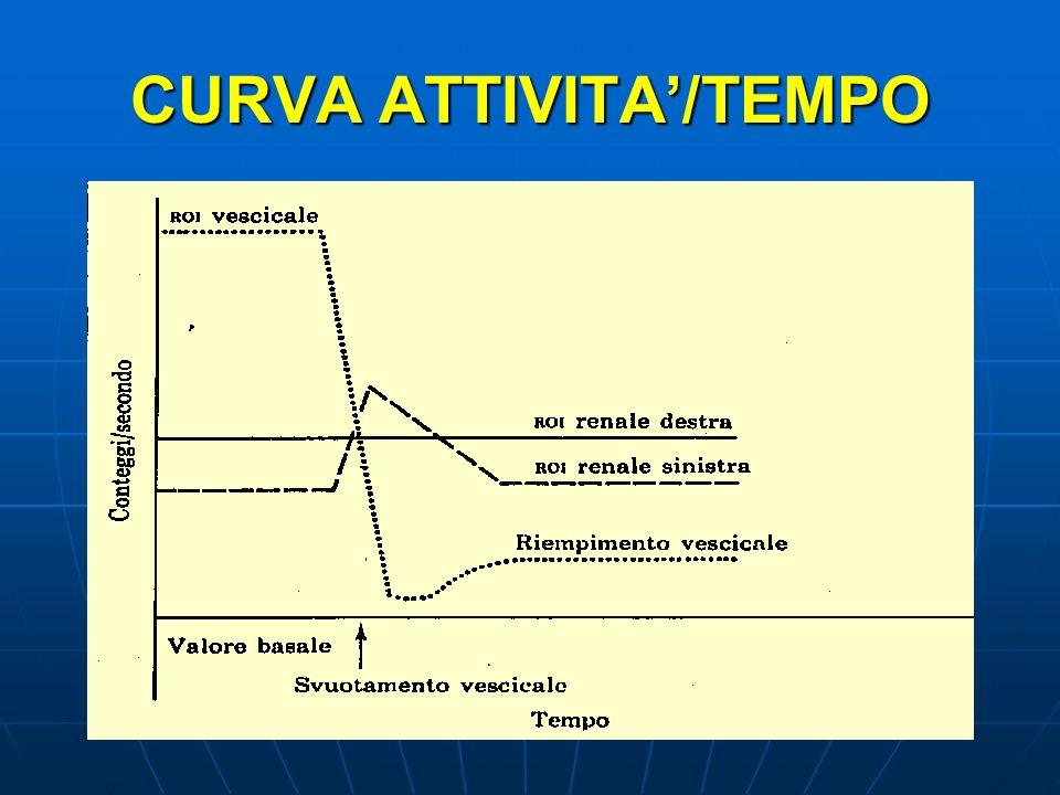 CURVA ATTIVITA/TEMPO