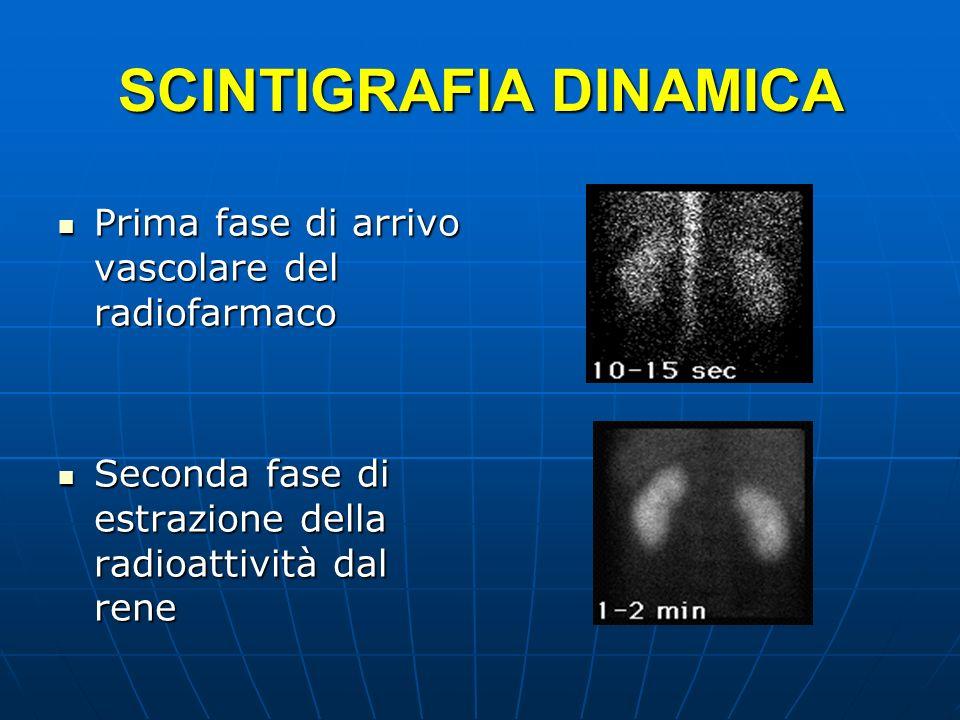 SCINTIGRAFIA DINAMICA Prima fase di arrivo vascolare del radiofarmaco Prima fase di arrivo vascolare del radiofarmaco Seconda fase di estrazione della