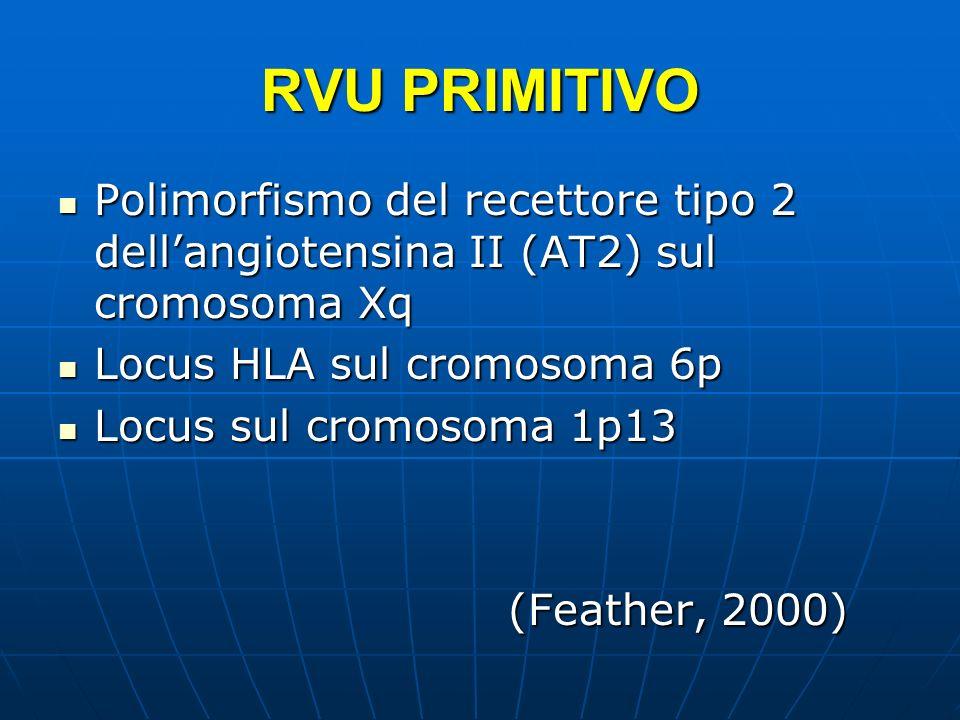 RVU PRIMITIVO Polimorfismo del recettore tipo 2 dellangiotensina II (AT2) sul cromosoma Xq Polimorfismo del recettore tipo 2 dellangiotensina II (AT2)
