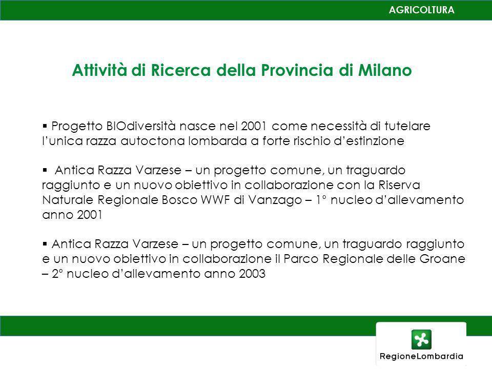 Attività di Ricerca della Provincia di Milano Progetto BIOdiversità nasce nel 2001 come necessità di tutelare lunica razza autoctona lombarda a forte