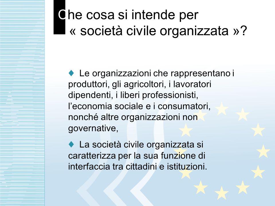 Che cosa si intende per « società civile organizzata »? Le organizzazioni che rappresentano i produttori, gli agricoltori, i lavoratori dipendenti, i