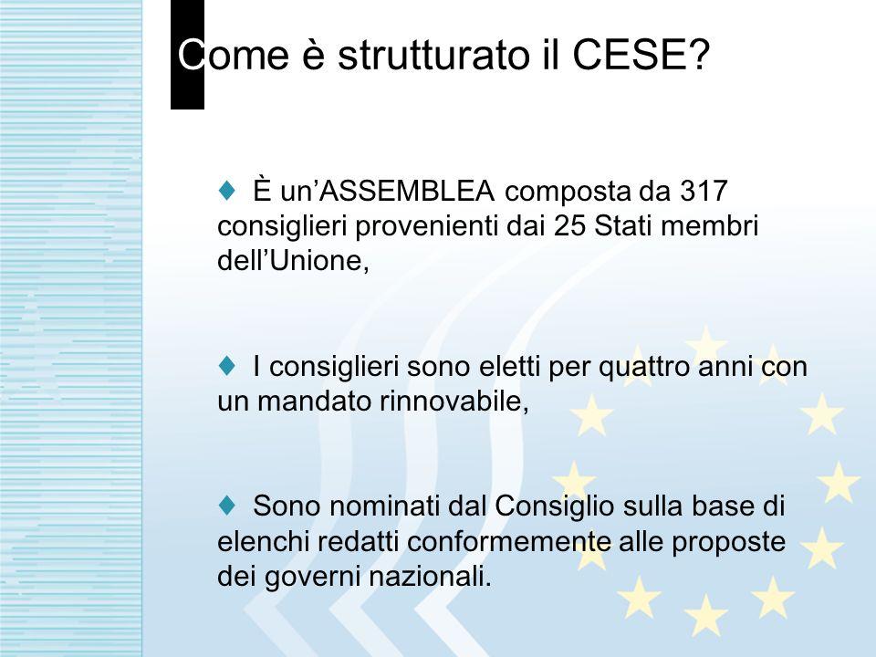 Come è strutturato il CESE? È unASSEMBLEA composta da 317 consiglieri provenienti dai 25 Stati membri dellUnione, I consiglieri sono eletti per quattr