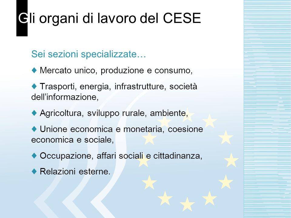 Gli organi di lavoro del CESE Sei sezioni specializzate… Mercato unico, produzione e consumo, Trasporti, energia, infrastrutture, società dellinformaz