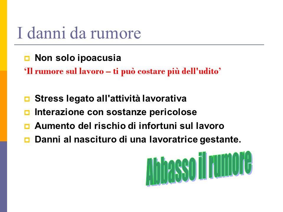 I danni da rumore Non solo ipoacusia Il rumore sul lavoro – ti può costare più dell'udito Stress legato all'attività lavorativa Interazione con sostan