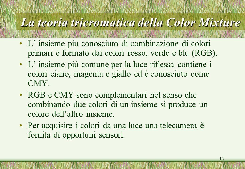 13 La teoria tricromatica della Color Mixture L insieme piu conosciuto di combinazione di colori primari è formato dai colori rosso, verde e blu (RGB)