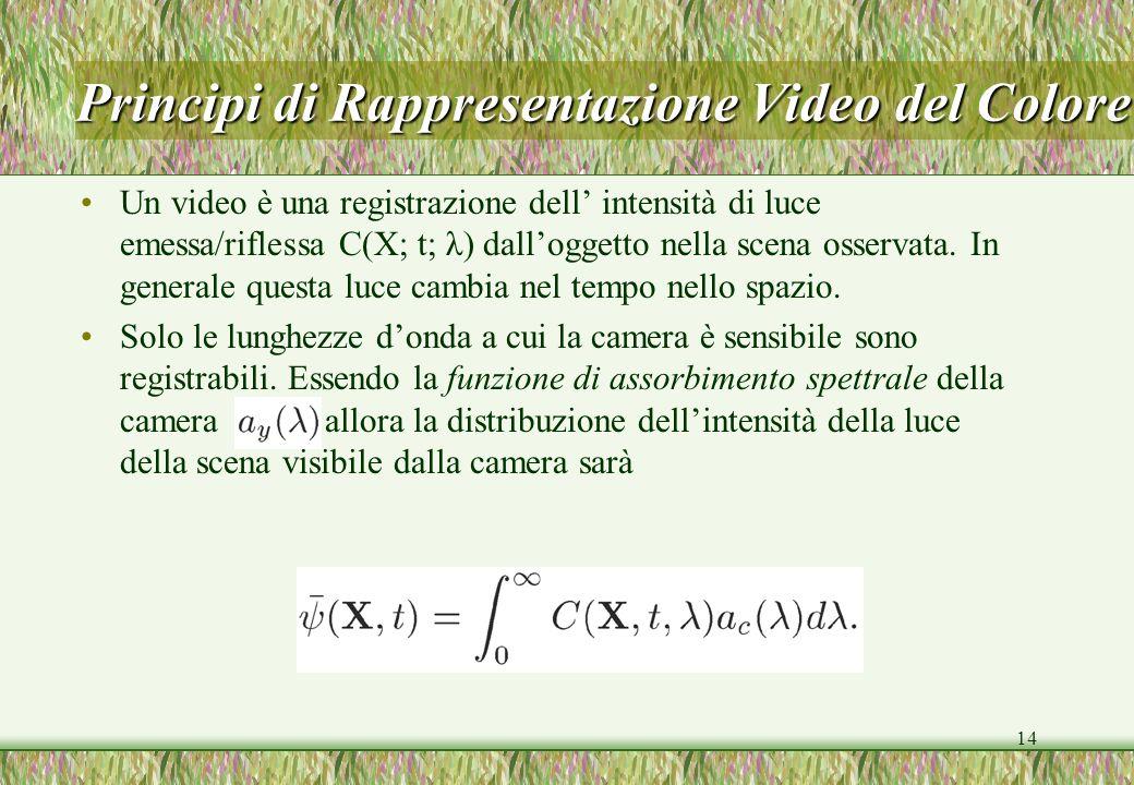 14 Principi di Rappresentazione Video del Colore Un video è una registrazione dell intensità di luce emessa/riflessa C(X; t; λ) dalloggetto nella scen