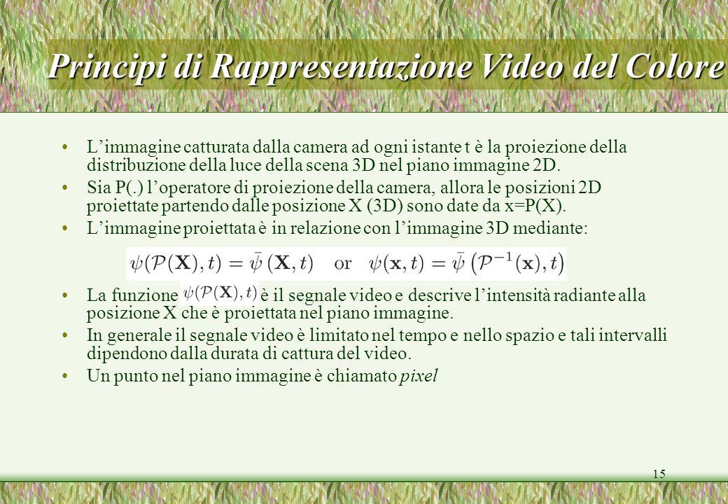 15 Limmagine catturata dalla camera ad ogni istante t è la proiezione della distribuzione della luce della scena 3D nel piano immagine 2D. Sia P(.) lo