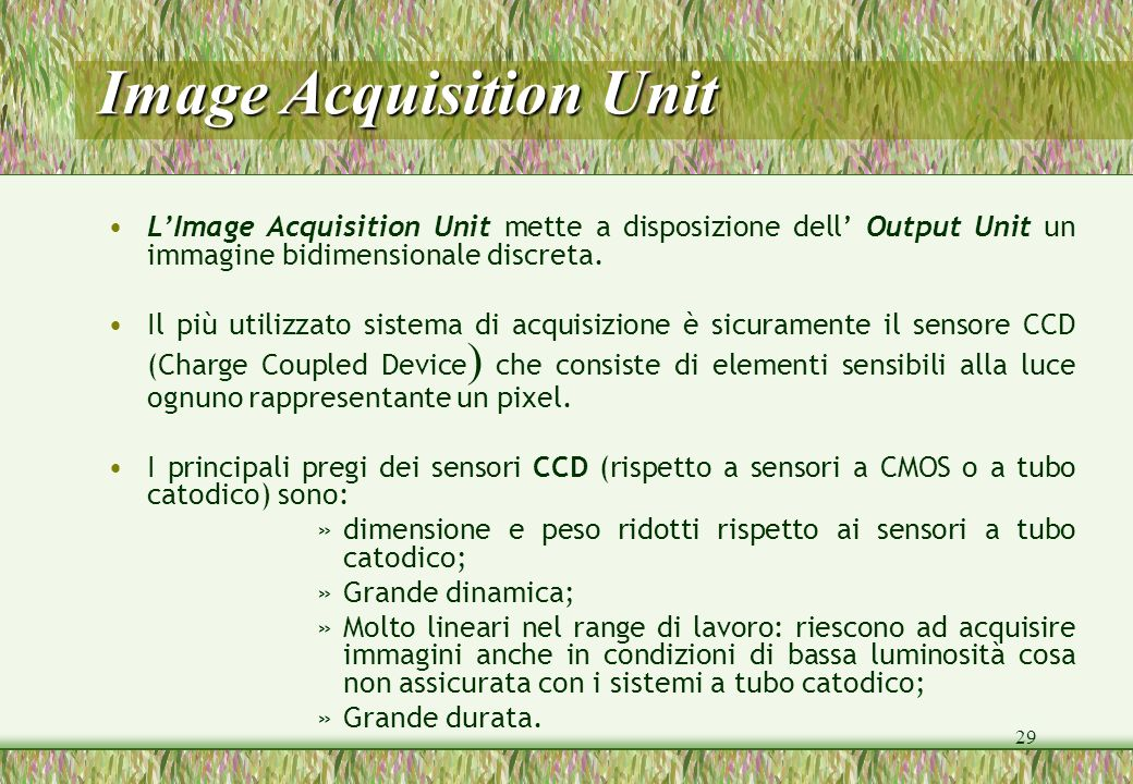 29 Image Acquisition Unit LImage Acquisition Unit mette a disposizione dell Output Unit un immagine bidimensionale discreta. Il più utilizzato sistema