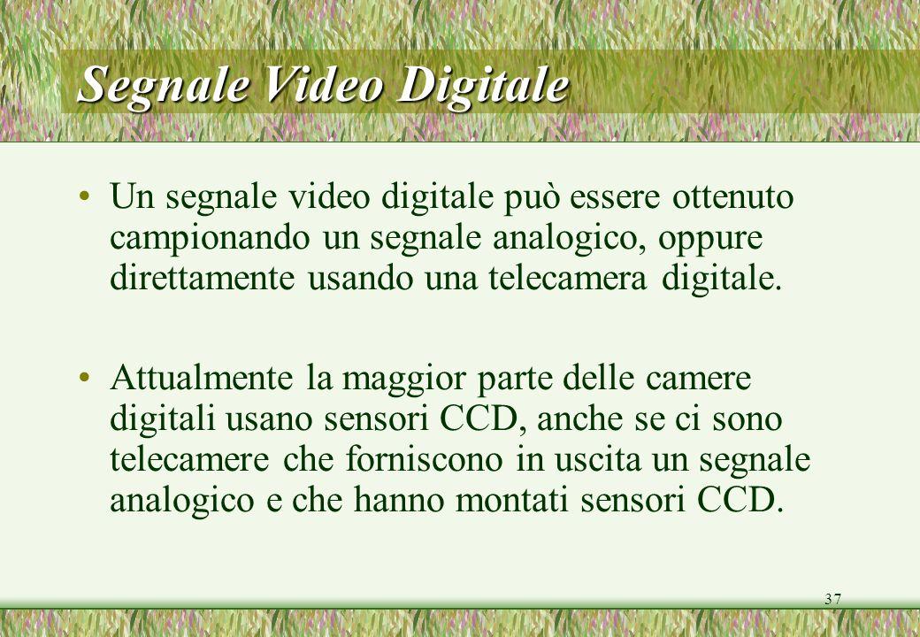 37 Segnale Video Digitale Un segnale video digitale può essere ottenuto campionando un segnale analogico, oppure direttamente usando una telecamera di