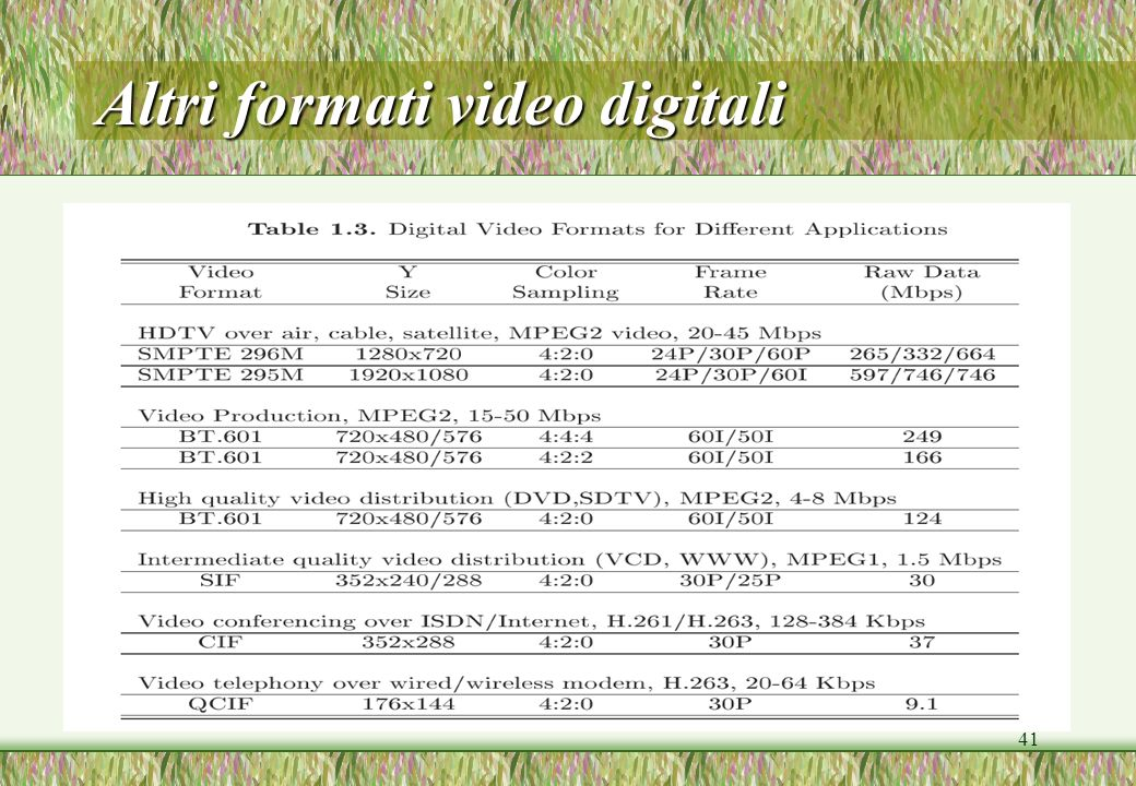 41 Altri formati video digitali