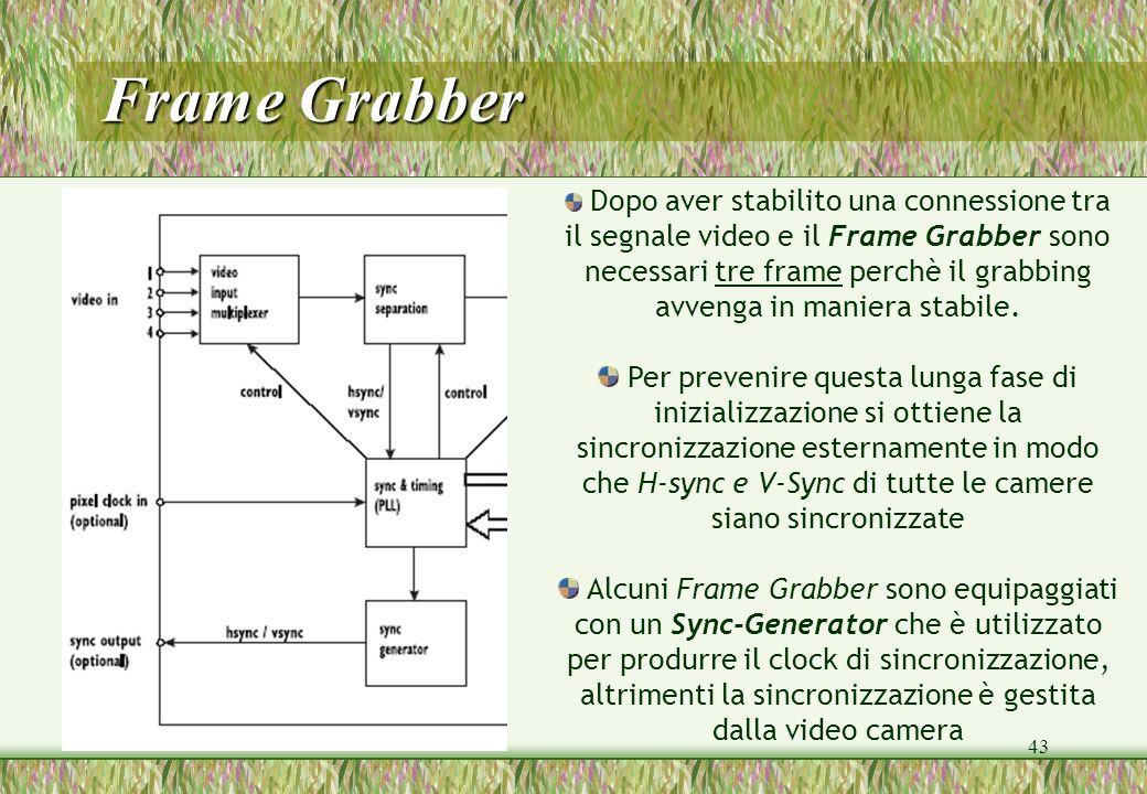 43 Dopo aver stabilito una connessione tra il segnale video e il Frame Grabber sono necessari tre frame perchè il grabbing avvenga in maniera stabile.