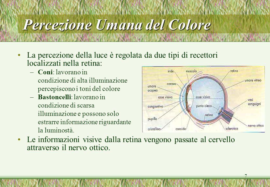 7 Percezione Umana del Colore La percezione della luce è regolata da due tipi di recettori localizzati nella retina: –Coni: lavorano in condizione di