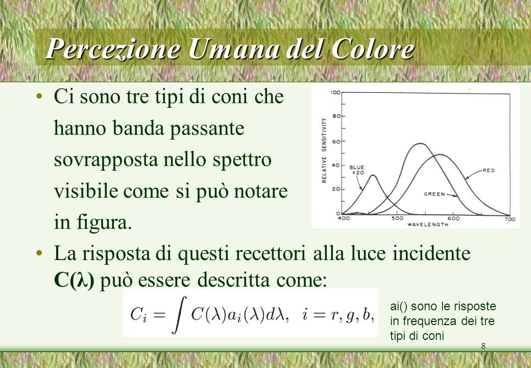 8 Percezione Umana del Colore Ci sono tre tipi di coni che hanno banda passante sovrapposta nello spettro visibile come si può notare in figura. La ri