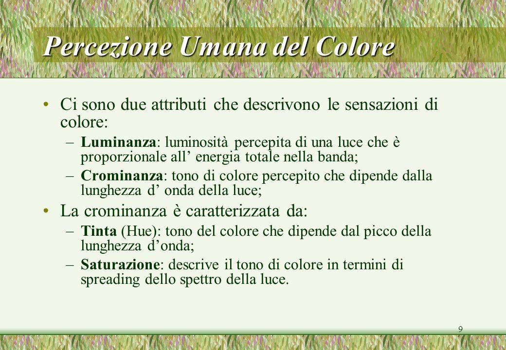 9 Percezione Umana del Colore Ci sono due attributi che descrivono le sensazioni di colore: –Luminanza: luminosità percepita di una luce che è proporz