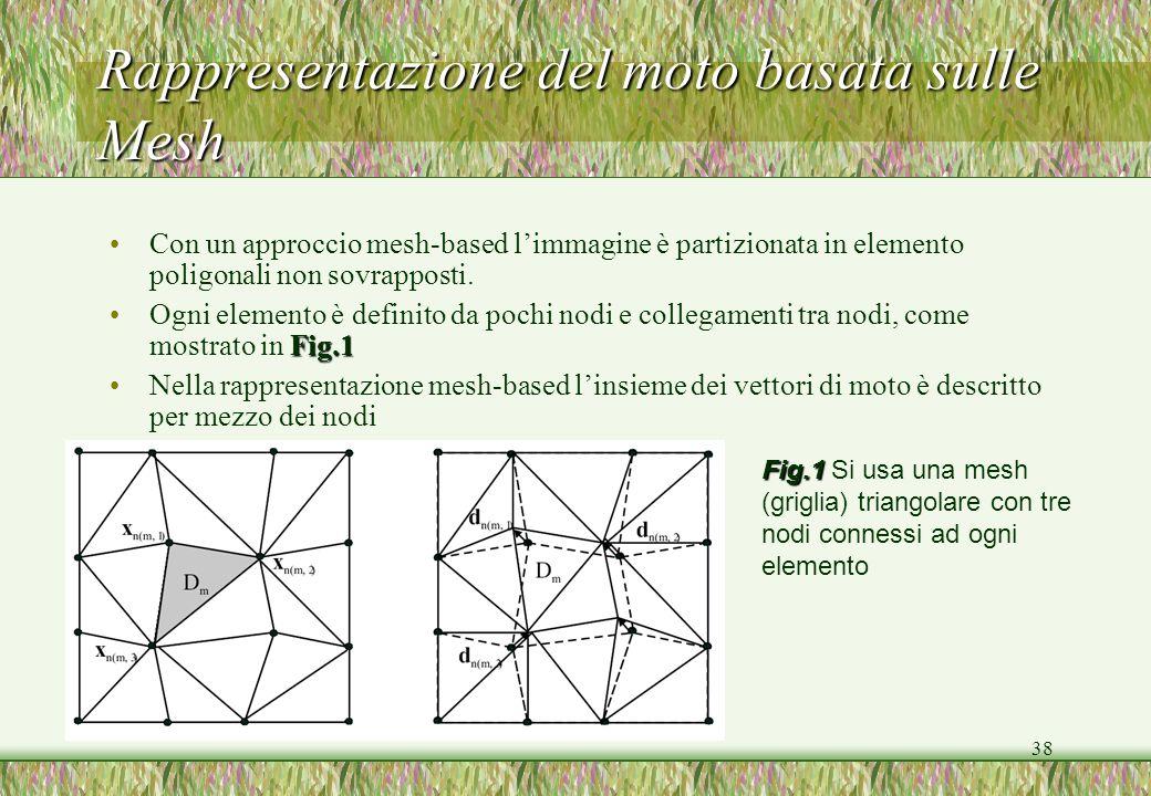 38 Rappresentazione del moto basata sulle Mesh Con un approccio mesh-based limmagine è partizionata in elemento poligonali non sovrapposti. Fig.1Ogni