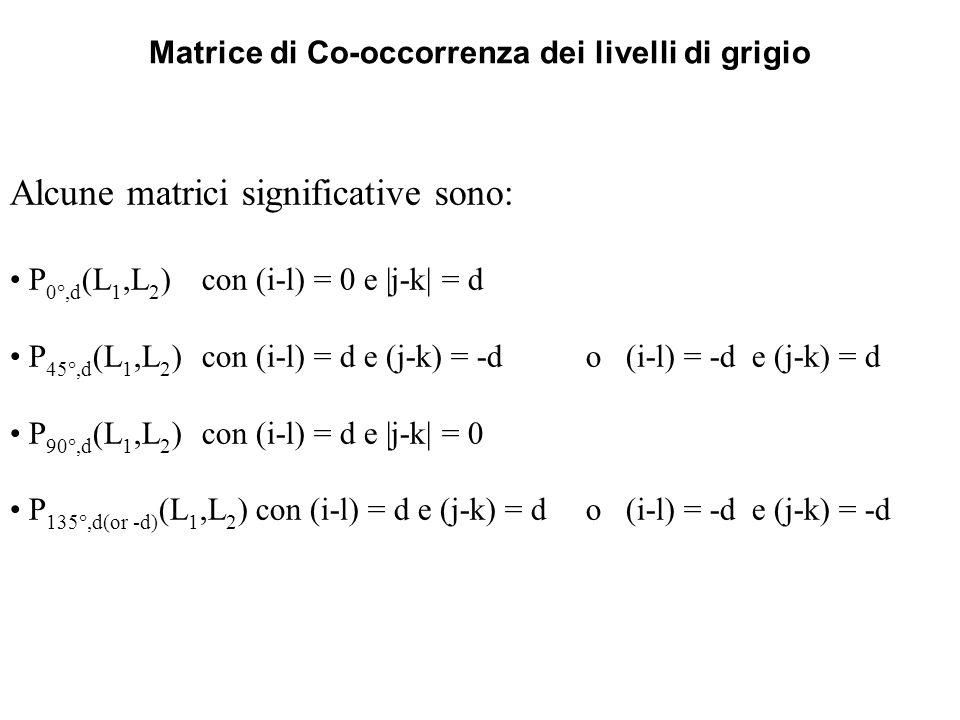 Matrice di Co-occorrenza dei livelli di grigio Alcune matrici significative sono: P 0,d (L 1,L 2 )con (i-l) = 0 e |j-k| = d P 45,d (L 1,L 2 )con (i-l)