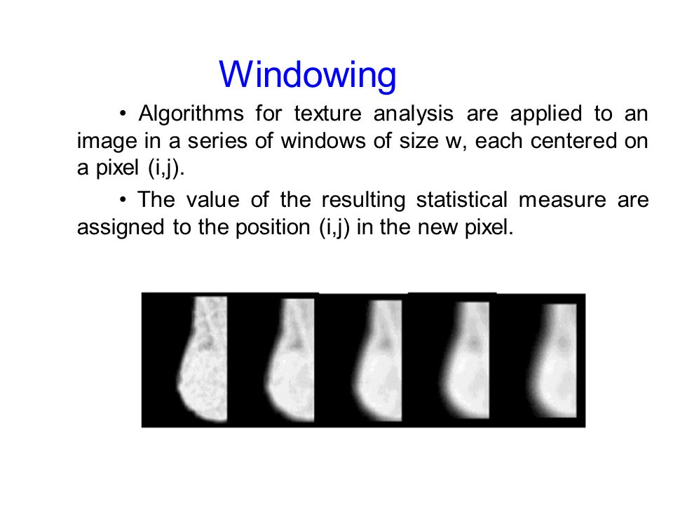 Windowing Algorithms for texture analysis are applied to an image in a series of windows of size w, each centered on a pixel (i,j).