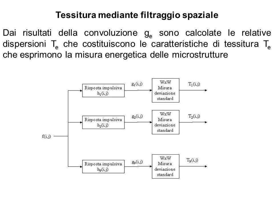 Tessitura mediante filtraggio spaziale Dai risultati della convoluzione g e sono calcolate le relative dispersioni T e che costituiscono le caratteris