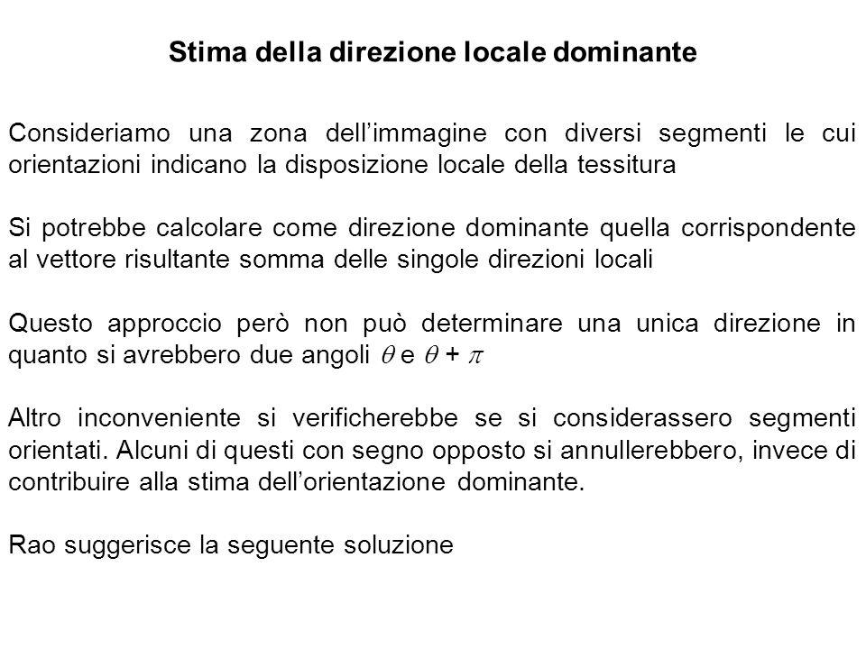 Stima della direzione locale dominante Consideriamo una zona dellimmagine con diversi segmenti le cui orientazioni indicano la disposizione locale del
