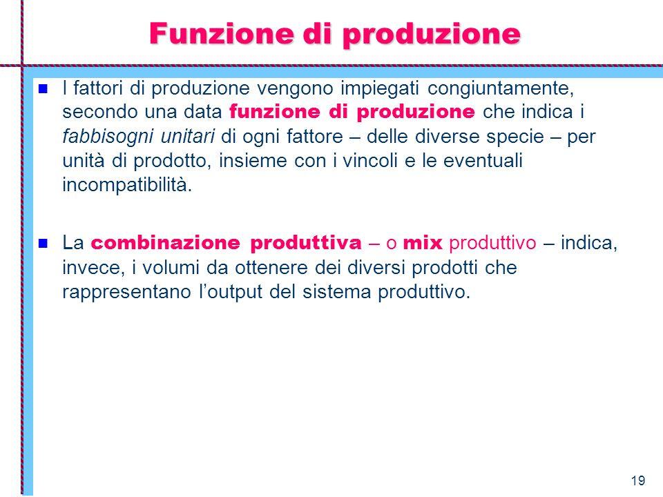 19 Funzione di produzione I fattori di produzione vengono impiegati congiuntamente, secondo una data funzione di produzione che indica i fabbisogni un