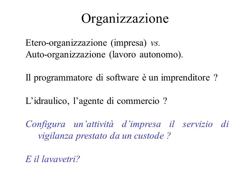 Organizzazione Etero-organizzazione (impresa) vs. Auto-organizzazione (lavoro autonomo). Il programmatore di software è un imprenditore ? Lidraulico,