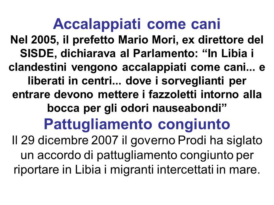 Accalappiati come cani Nel 2005, il prefetto Mario Mori, ex direttore del SISDE, dichiarava al Parlamento: In Libia i clandestini vengono accalappiati