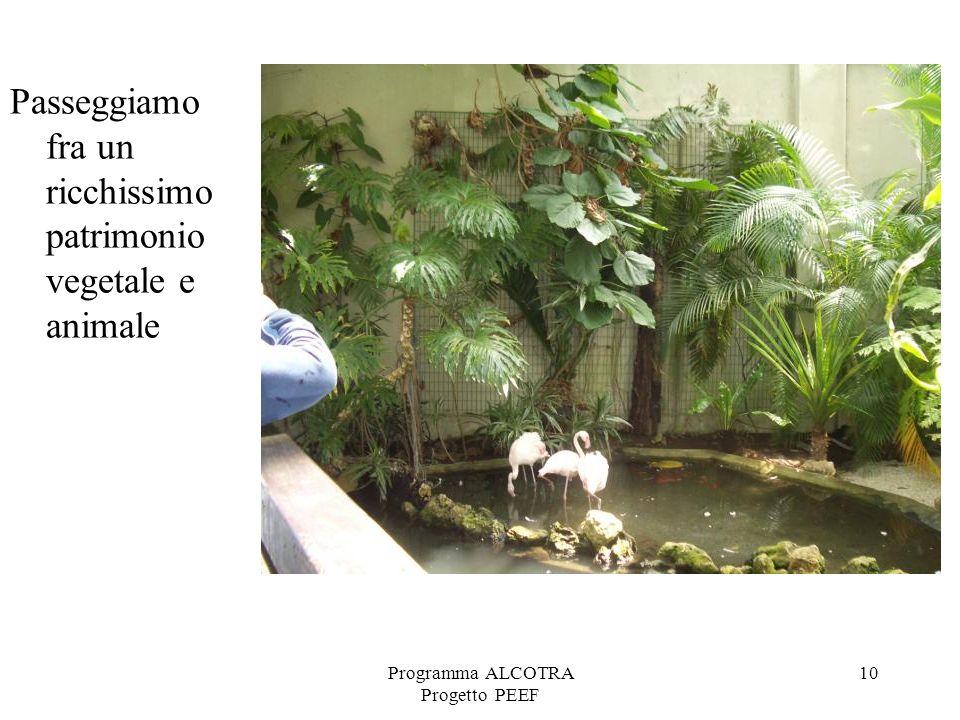 Programma ALCOTRA Progetto PEEF 10 Passeggiamo fra un ricchissimo patrimonio vegetale e animale