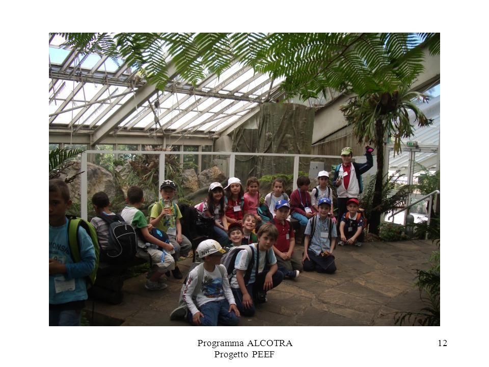 Programma ALCOTRA Progetto PEEF 12