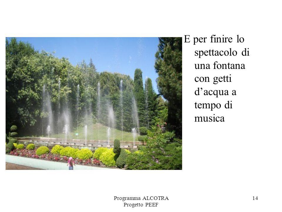 Programma ALCOTRA Progetto PEEF 14 E per finire lo spettacolo di una fontana con getti dacqua a tempo di musica