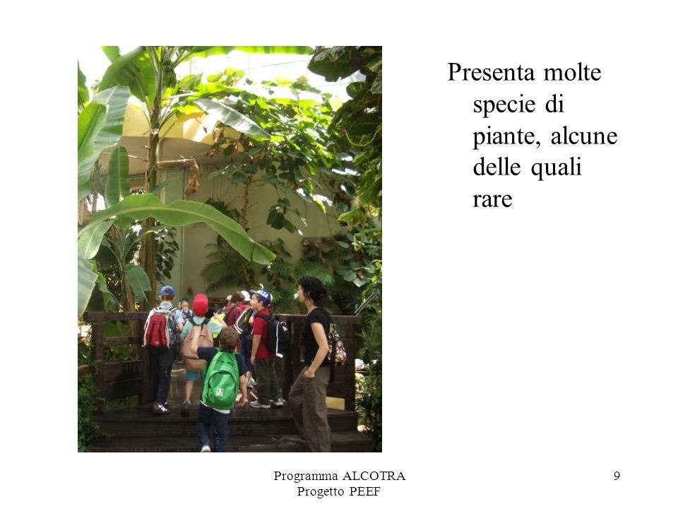 Programma ALCOTRA Progetto PEEF 9 Presenta molte specie di piante, alcune delle quali rare