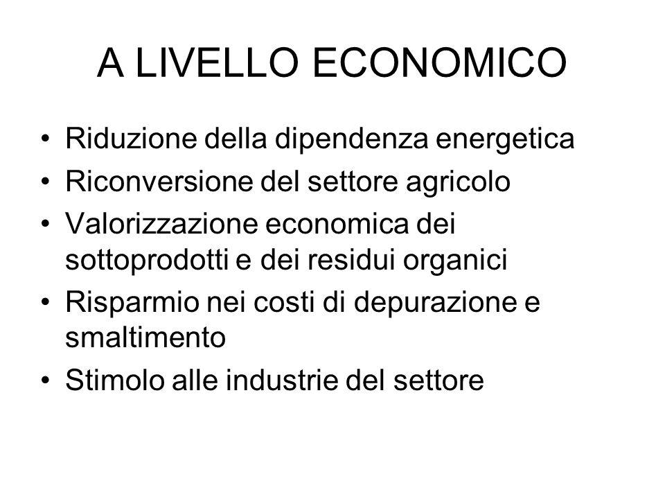 A LIVELLO ECONOMICO Riduzione della dipendenza energetica Riconversione del settore agricolo Valorizzazione economica dei sottoprodotti e dei residui organici Risparmio nei costi di depurazione e smaltimento Stimolo alle industrie del settore