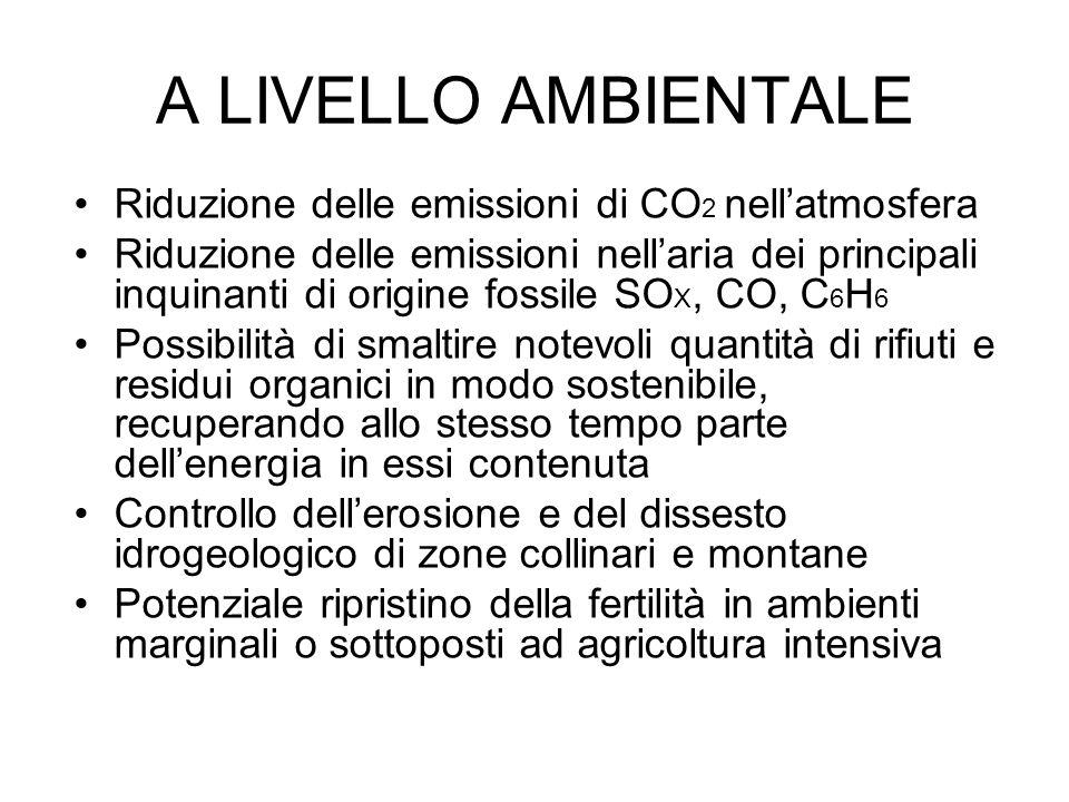 A LIVELLO AMBIENTALE Riduzione delle emissioni di CO 2 nellatmosfera Riduzione delle emissioni nellaria dei principali inquinanti di origine fossile SO X, CO, C 6 H 6 Possibilità di smaltire notevoli quantità di rifiuti e residui organici in modo sostenibile, recuperando allo stesso tempo parte dellenergia in essi contenuta Controllo dellerosione e del dissesto idrogeologico di zone collinari e montane Potenziale ripristino della fertilità in ambienti marginali o sottoposti ad agricoltura intensiva