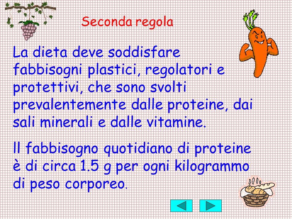 Seconda regola La dieta deve soddisfare fabbisogni plastici, regolatori e protettivi, che sono svolti prevalentemente dalle proteine, dai sali mineral