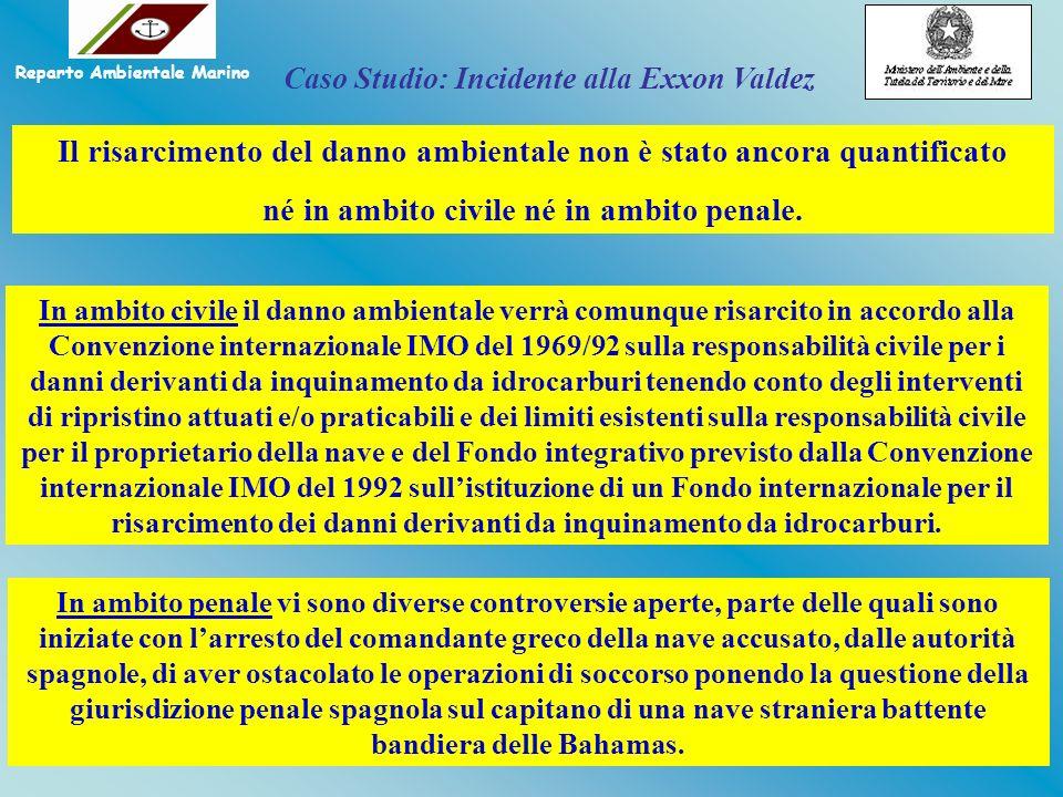 Il risarcimento del danno ambientale non è stato ancora quantificato né in ambito civile né in ambito penale. In ambito civile il danno ambientale ver