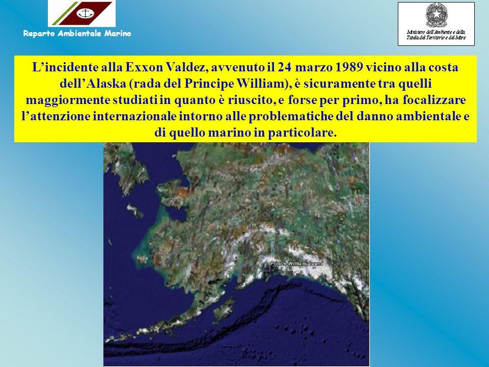 Lincidente alla Exxon Valdez, avvenuto il 24 marzo 1989 vicino alla costa dellAlaska (rada del Principe William), è sicuramente tra quelli maggiorment