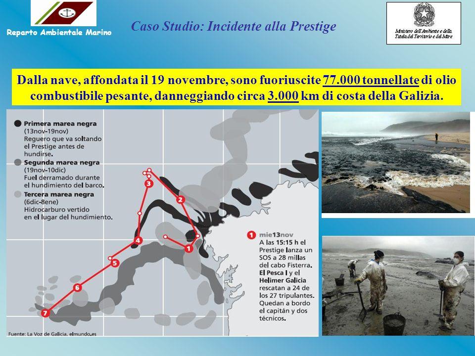 Dalla nave, affondata il 19 novembre, sono fuoriuscite 77.000 tonnellate di olio combustibile pesante, danneggiando circa 3.000 km di costa della Gali