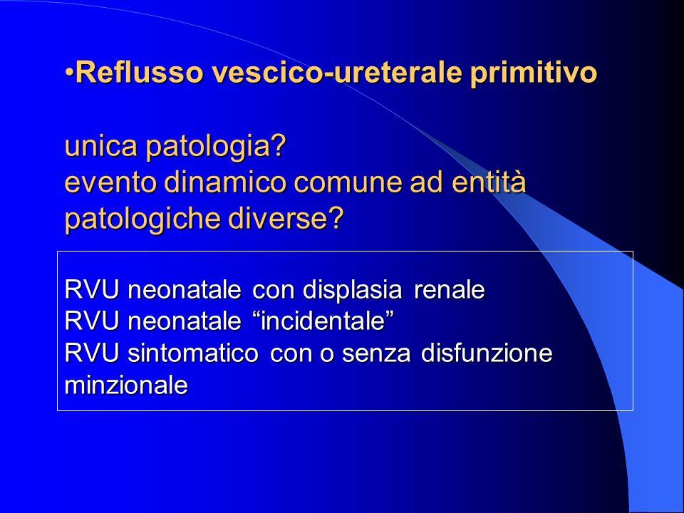 Reflusso vescico-ureterale primitivo unica patologia.