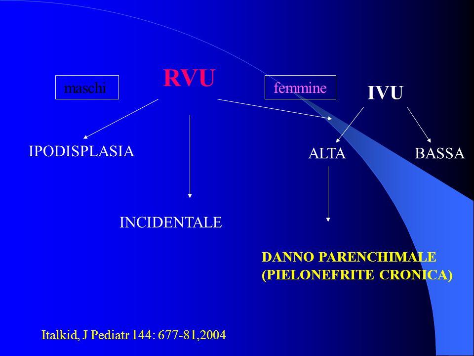 RVU IPODISPLASIA maschi INCIDENTALE femmine IVU ALTABASSA DANNO PARENCHIMALE (PIELONEFRITE CRONICA) Italkid, J Pediatr 144: 677-81,2004