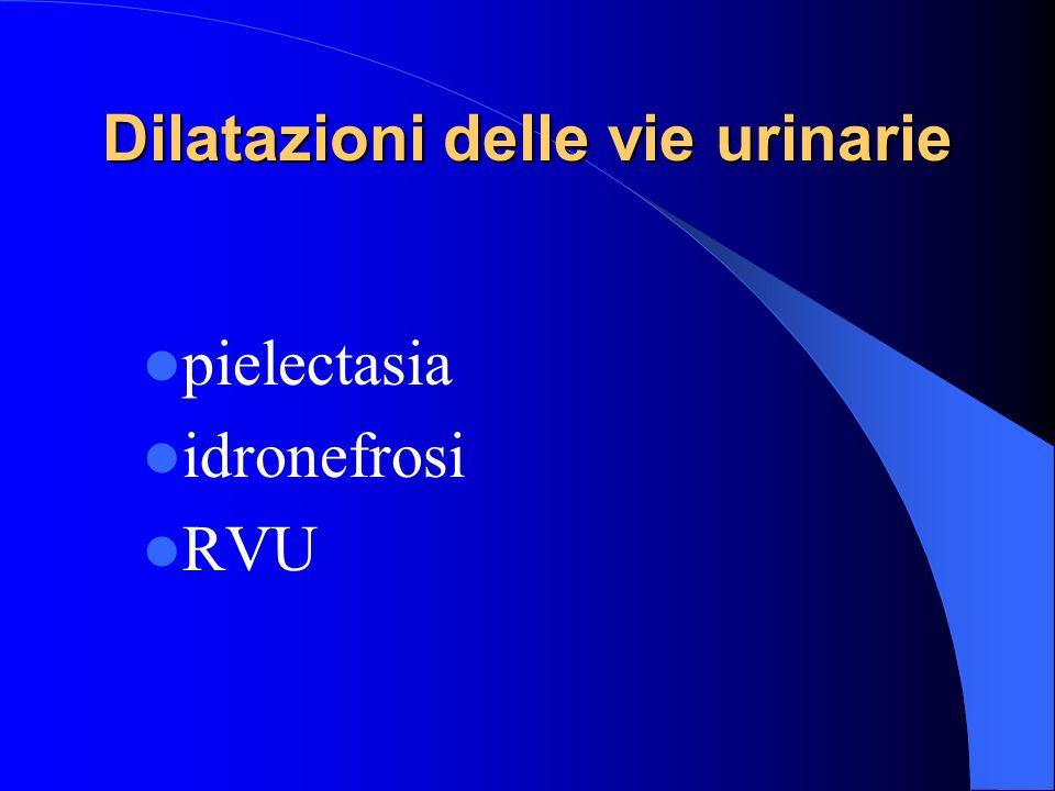 Dilatazioni delle vie urinarie pielectasia idronefrosi RVU