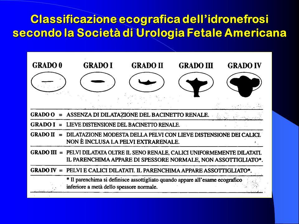 Classificazione ecografica dellidronefrosi secondo la Società di Urologia Fetale Americana