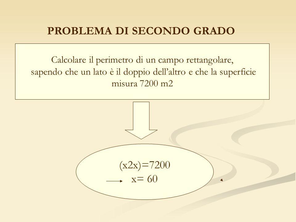 PROBLEMA DI SECONDO GRADO Calcolare il perimetro di un campo rettangolare, sapendo che un lato è il doppio dellaltro e che la superficie misura 7200 m