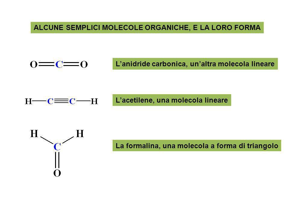 ALCUNE SEMPLICI MOLECOLE ORGANICHE, E LA LORO FORMA Lacetilene, una molecola lineare Lanidride carbonica, unaltra molecola lineare La formalina, una m