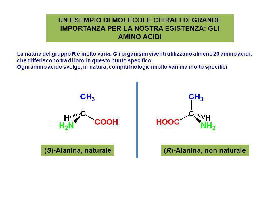 UN ESEMPIO DI MOLECOLE CHIRALI DI GRANDE IMPORTANZA PER LA NOSTRA ESISTENZA: GLI AMINO ACIDI (S)-Alanina, naturale(R)-Alanina, non naturale La natura