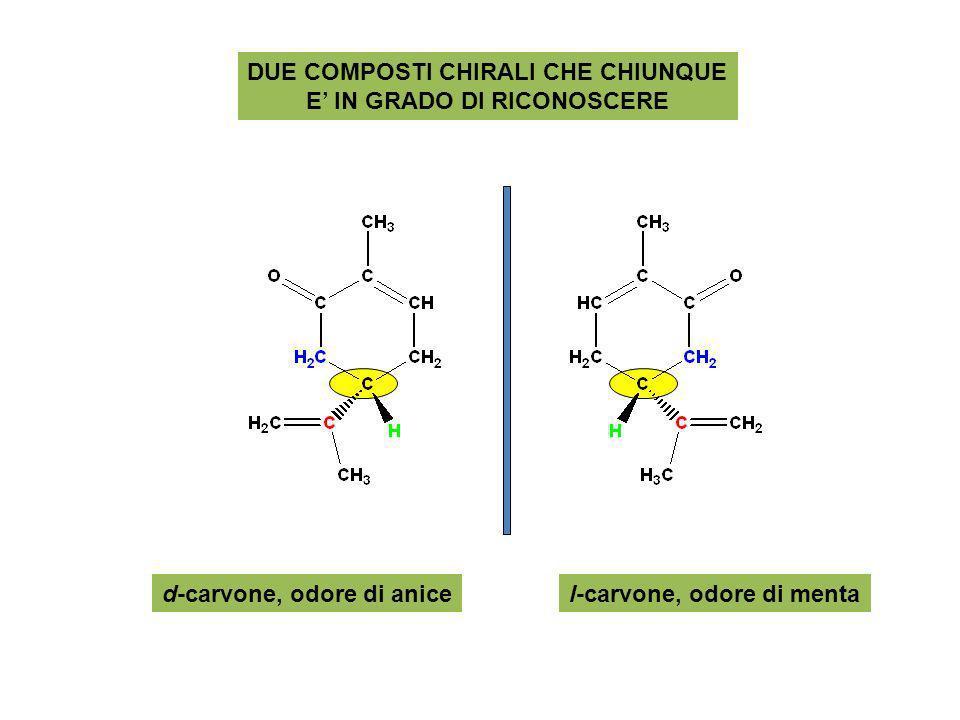 DUE COMPOSTI CHIRALI CHE CHIUNQUE E IN GRADO DI RICONOSCERE d-carvone, odore di anicel-carvone, odore di menta