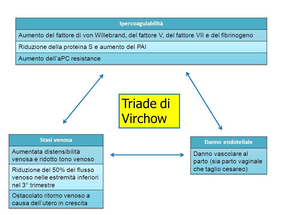 Triade di Virchow