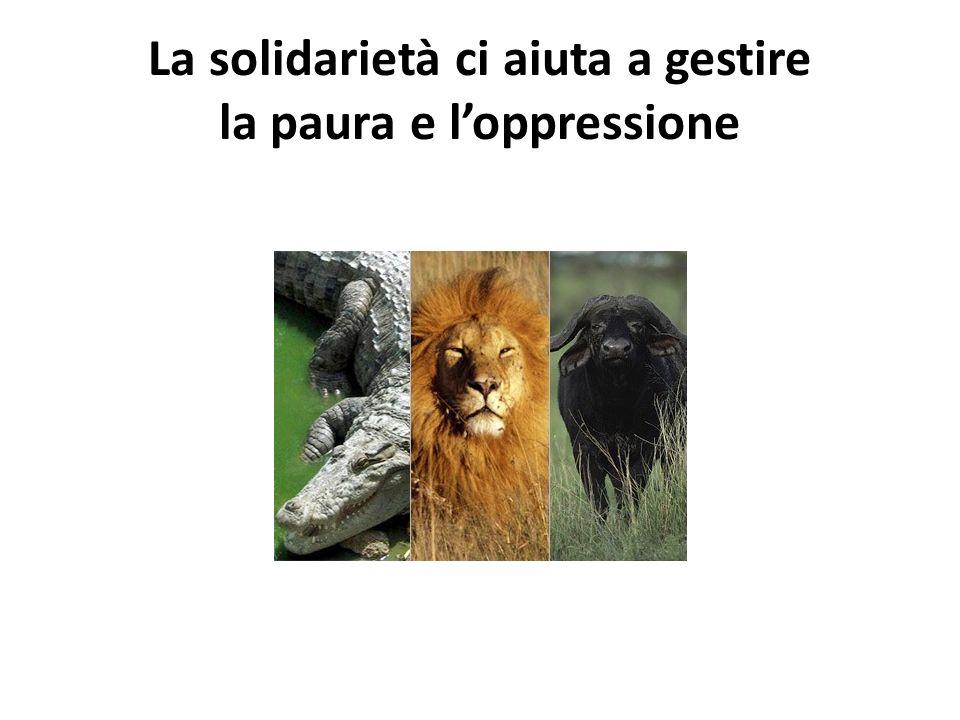 La solidarietà ci aiuta a gestire la paura e loppressione