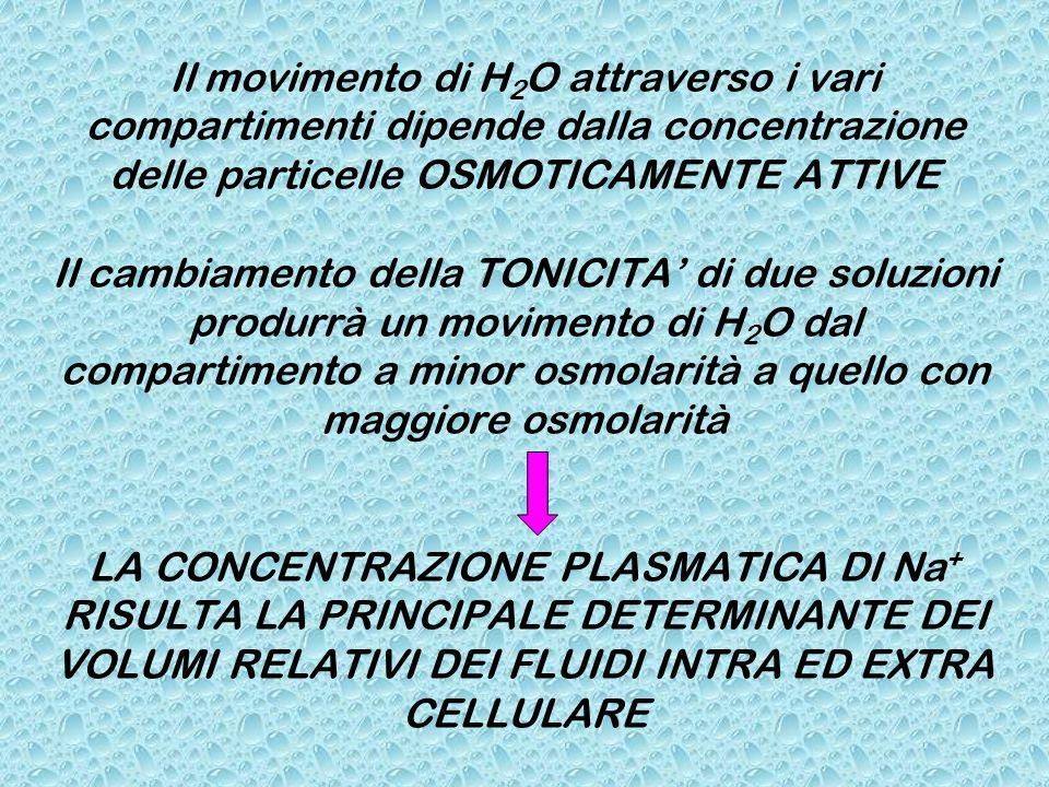 Il movimento di H 2 O attraverso i vari compartimenti dipende dalla concentrazione delle particelle OSMOTICAMENTE ATTIVE Il cambiamento della TONICITA